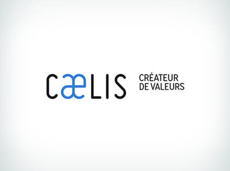 realisations_identites-de-marques_454x339_caelis